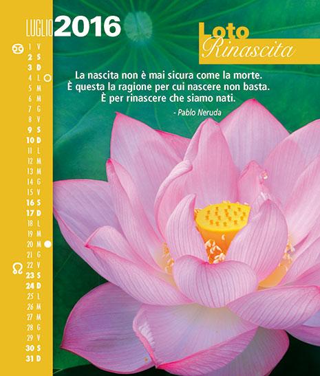 Calendario FioriEssenzeParole 2016 Luglio