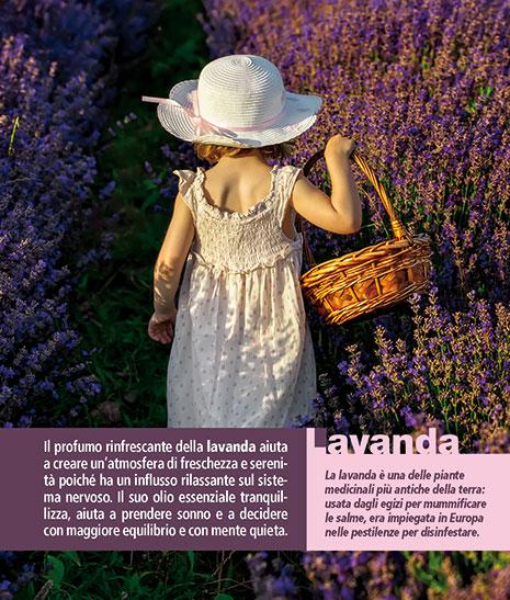 Calendario FioriEssenzeParole 2016 Agosto. Pagina retro