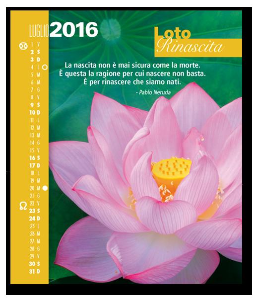 Calendario FioriEssenzeParole 2016. Biancolapis design